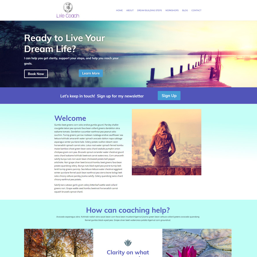 Life Coach WordPress Theme